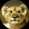 Аватар пользователя symurana