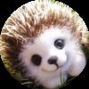 Аватар пользователя aminka