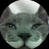 Аватар пользователя Kot Da Vinci