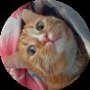 Аватар пользователя seligor