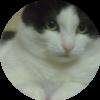 Аватар пользователя London776