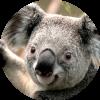 Аватар пользователя Pafliga