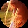 Аватар пользователя Zyablik