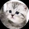 Аватар пользователя Tess