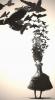 Аватар пользователя B.Size
