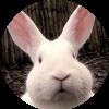 Аватар пользователя Маринка