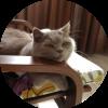 Аватар пользователя _Kostya_