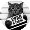 Аватар пользователя Швондер