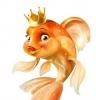 Аватар пользователя Golda