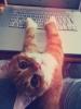 Аватар пользователя Женя 13