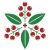 Организация «Альвиара»