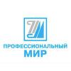 Организация «Профессиональный мир»