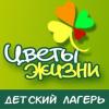 Организация «Цветы жизни»