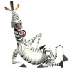 Zebra fit