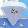 Организация «ES»