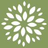 Организация «Цветы и Букеты»