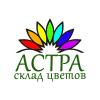 Организация «Астра»