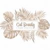 Организация «Cat Beauty»