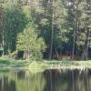 Отдых на озере Чемоданчик сделали платным