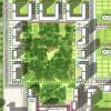 «Будет шикарно»: на месте Берёзовой рощи построят парк