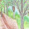 Объявлен конкурс фотографий и рисунков на тему Юго-Западного лесопарка