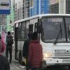 Автобус № 012 снова будет ходить на Елизавет из Академического