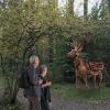 «С арт-объектами, лаундж- и фитнес-зонами»: показываем проект изменения Юго-Западного лесопарка