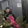 Поймали по горячим следам: в Академическом задержали похитителей ёлки