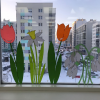 Первые весенние цветы «распустились» в школе №16
