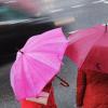 Субботник в Академическом перенесли на неопределённый срок из-за дождя