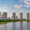 Девелопер ищет подрядчика за 81,5 миллион рублей