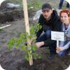 Акция «Посади семейное дерево»
