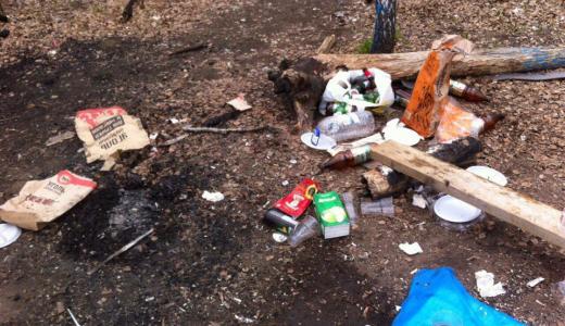 После Дня Победы горожане оставили в Берёзовой Роще горы мусора и пепелище