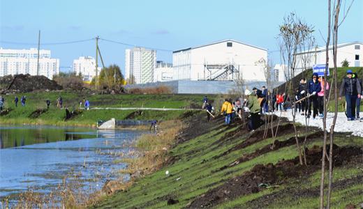 В Преображенском парке педагоги и ученики высадили 40 ив на аллее Учителей