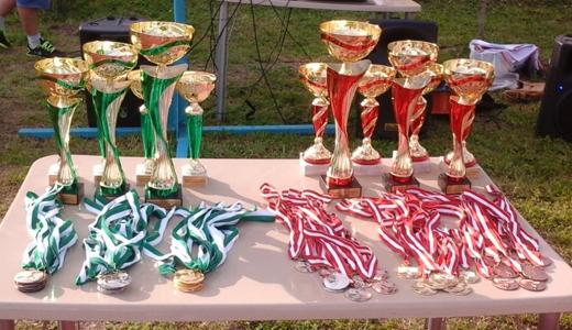 Девятая районная летняя спартакиада пройдёт под руководством известного спортсмена