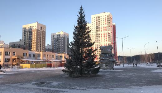 В районе установили новогодние ёлки
