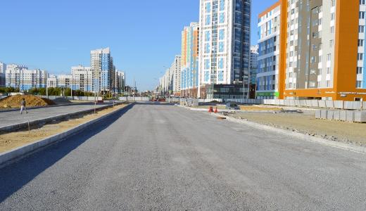 Новый участок улицы Вильгельма де Геннина построят до конца года