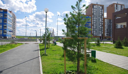 Более 2 тысяч деревьев и кустарников высадили в этом сезоне в Академическом