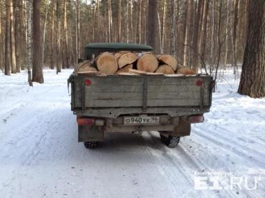 У озера «Чемоданчик» вырубают деревья