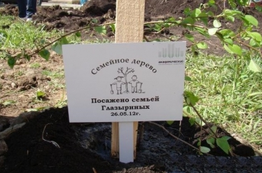 В Академическом пропадают семейные деревья