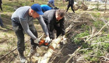 Жители 7 квартала очистили Берёзовую Рощу от мусора и сухостоя