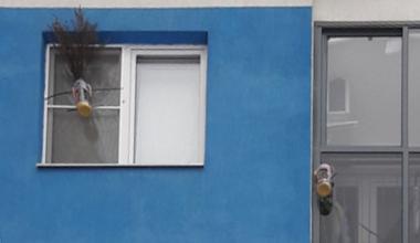 Кормушка для птиц вызвала недовольство соседей