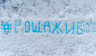 #РощаЖиви: защитники Берёзовой рощи в Академическом устроили очередную акцию