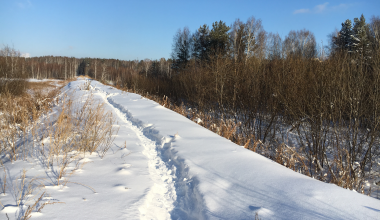 Можно провалиться: закрытые листами ЛДСП люки кабельной канализации замело снегом
