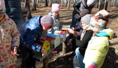 «Пусть у каждого будет свой дом»: дети сделали и повесили в Академическом скворечники для птиц