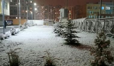 Деревья и траву в районе в середине октября засыпало первым снегом