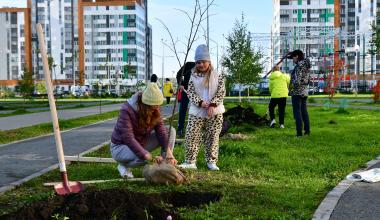 Более 500 деревьев высадили в Академическом районе на субботнике