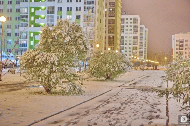 Заснеженная аллея 70-летия победы во втором квартале Академического