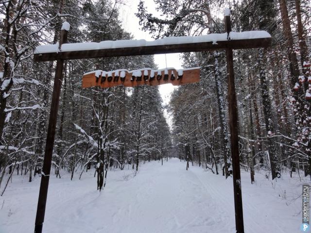 Тропа здоровья в Юго-западном лесопарке зимой