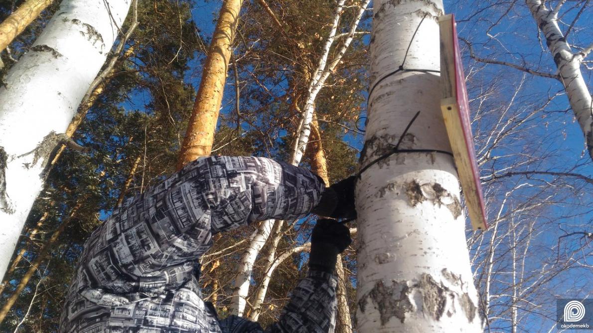 В Юго-Западном лесопарке установили новые аншлаги